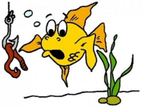 fisk i vandet dating hjemmeside
